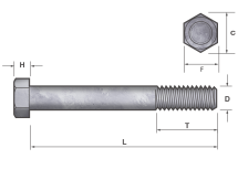 Hold Down Anchor Bolts